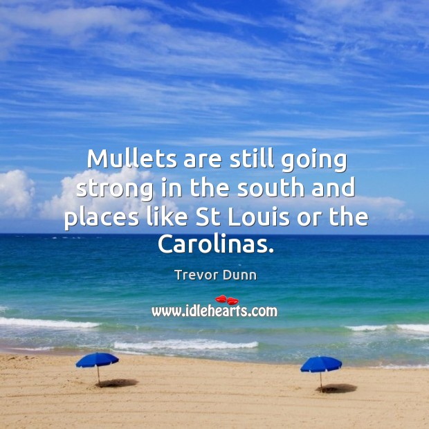 Mullets are still going strong in the south and places like st louis or the carolinas. Image
