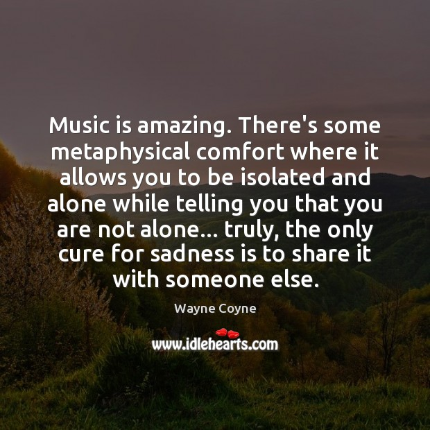 Music is amazing. There's some metaphysical comfort where it allows you to Wayne Coyne Picture Quote