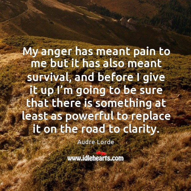 Image, My anger has meant pain to me but it has also meant survival, and before I give it up I'm going to be sure