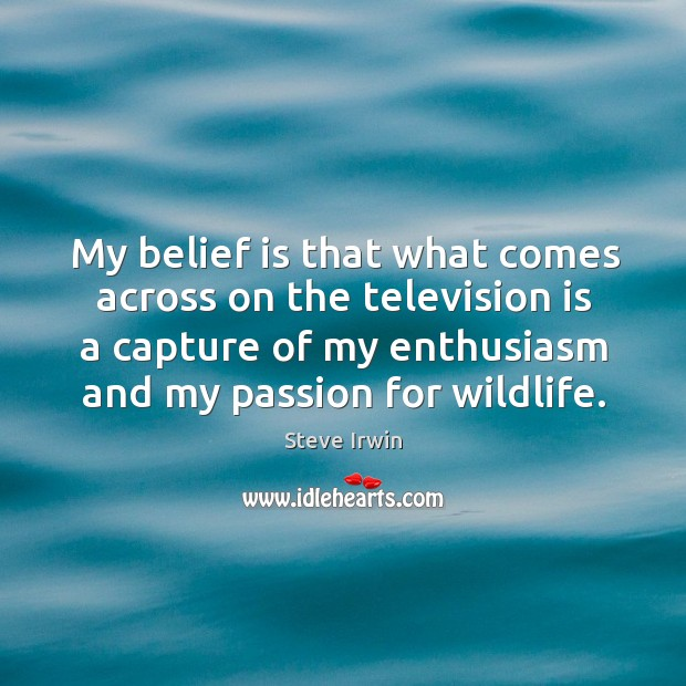 My belief is that what comes across on the television is a capture of my enthusiasm and my passion for wildlife. Belief Quotes Image