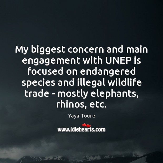 My biggest concern and main engagement with UNEP is focused on endangered Engagement Quotes Image