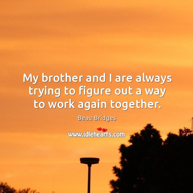 My brother and I are always trying to figure out a way to work again together. Beau Bridges Picture Quote