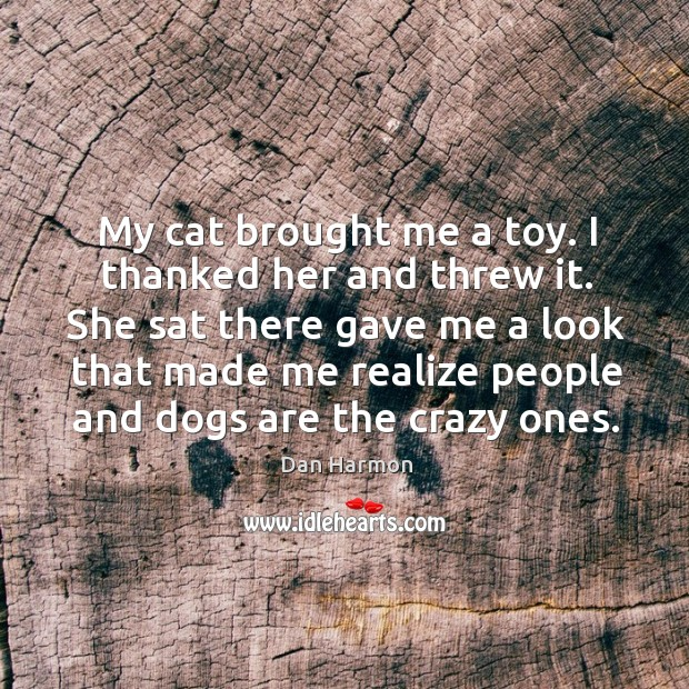 My cat brought me a toy. I thanked her and threw it. Dan Harmon Picture Quote