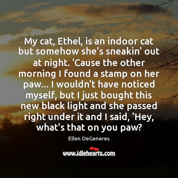 Image, My cat, Ethel, is an indoor cat but somehow she's sneakin' out
