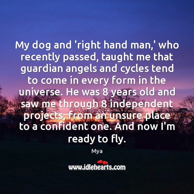 My dog and 'right hand man,' who recently passed, taught me Image