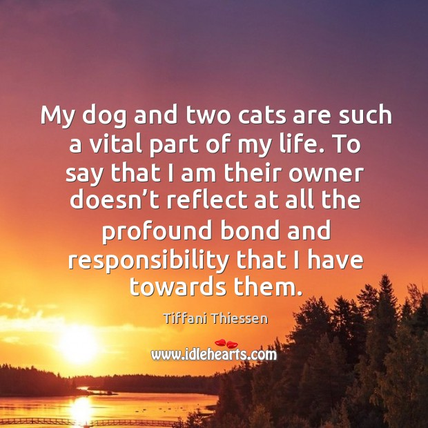 My dog and two cats are such a vital part of my life. To say that I am their owner Image