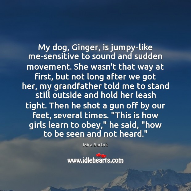My dog, Ginger, is jumpy-like me-sensitive to sound and sudden movement. She Image