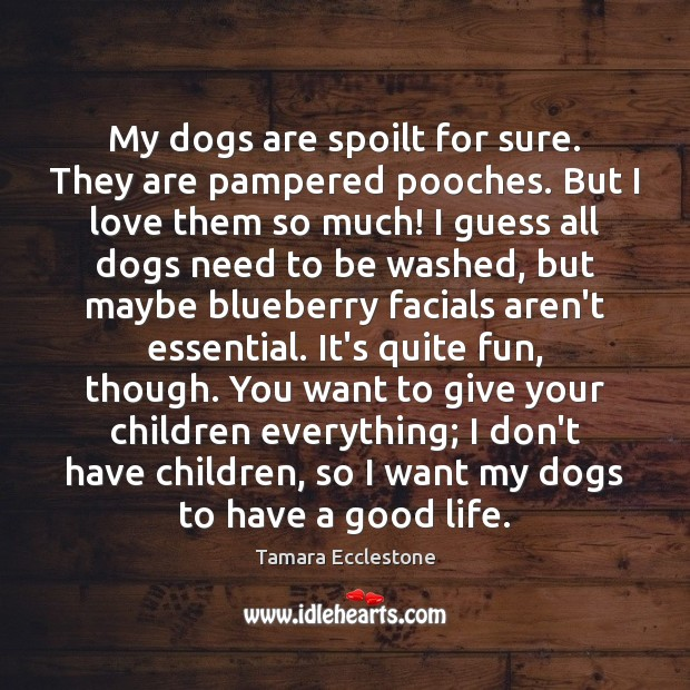 My dogs are spoilt for sure. They are pampered pooches. But I Image