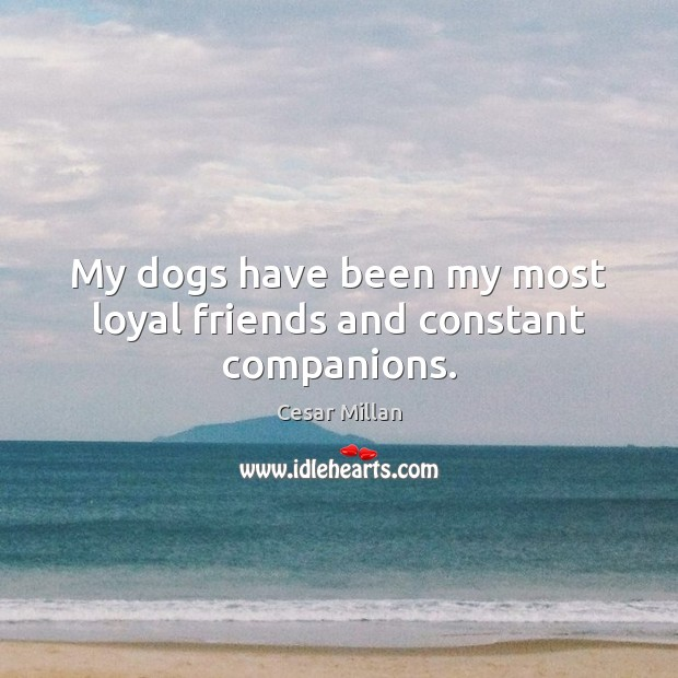 My dogs have been my most loyal friends and constant companions. Image