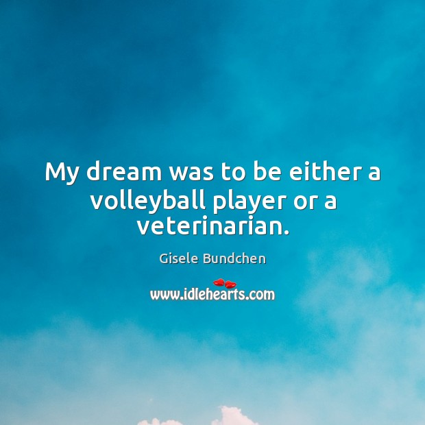 My dream was to be either a volleyball player or a veterinarian. Image