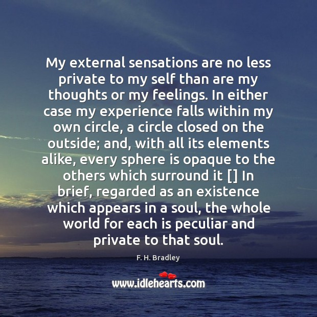 My external sensations are no less private to my self than are Image