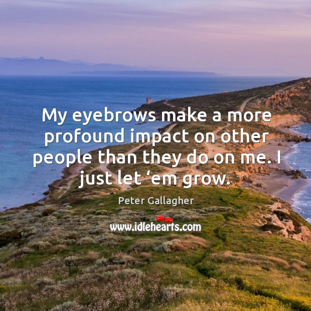 My eyebrows make a more profound impact on other people than they do on me. I just let 'em grow. Image