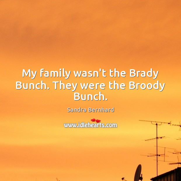 My family wasn't the Brady Bunch. They were the Broody Bunch. Sandra Bernhard Picture Quote