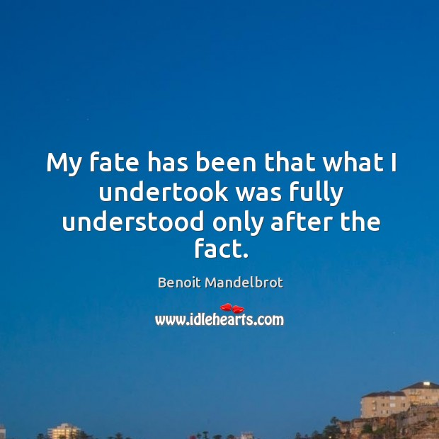 Image, My fate has been that what I undertook was fully understood only after the fact.