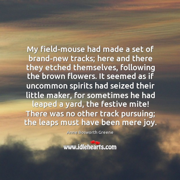 Image, My field-mouse had made a set of brand-new tracks; here and there