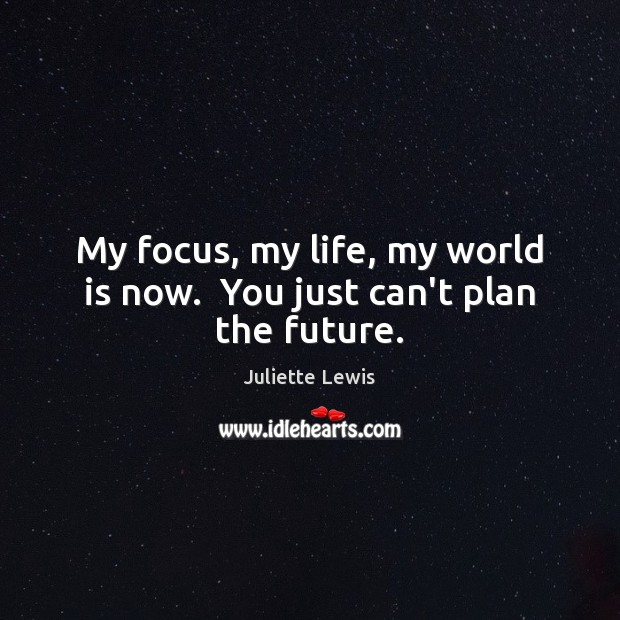 Juliette Lewis Picture Quote image saying: My focus, my life, my world is now.  You just can't plan the future.