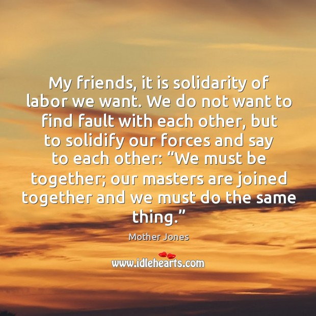 My friends, it is solidarity of labor we want. We do not want to find fault with each other Image