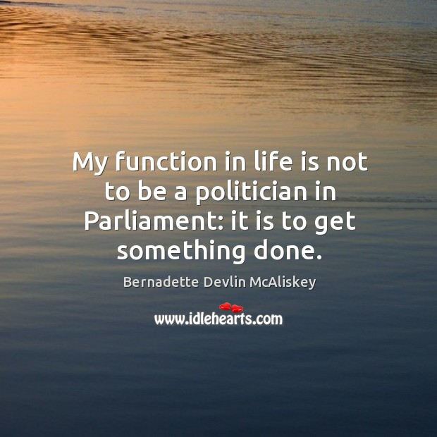 Image, My function in life is not to be a politician in parliament: it is to get something done.