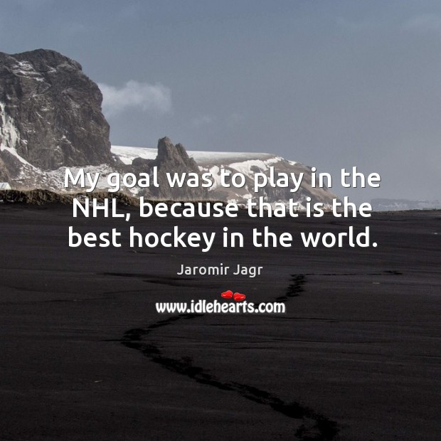 Image, My goal was to play in the nhl, because that is the best hockey in the world.