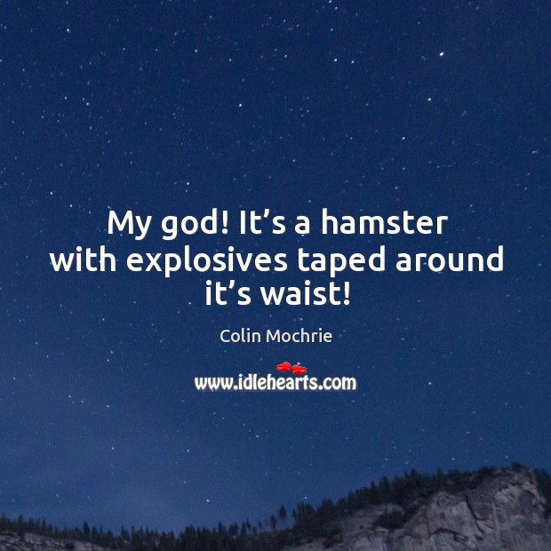 My God! it's a hamster with explosives taped around it's waist! Image