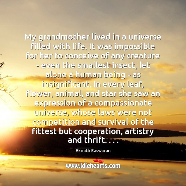 My grandmother lived in a universe filled with life. It was impossible Image