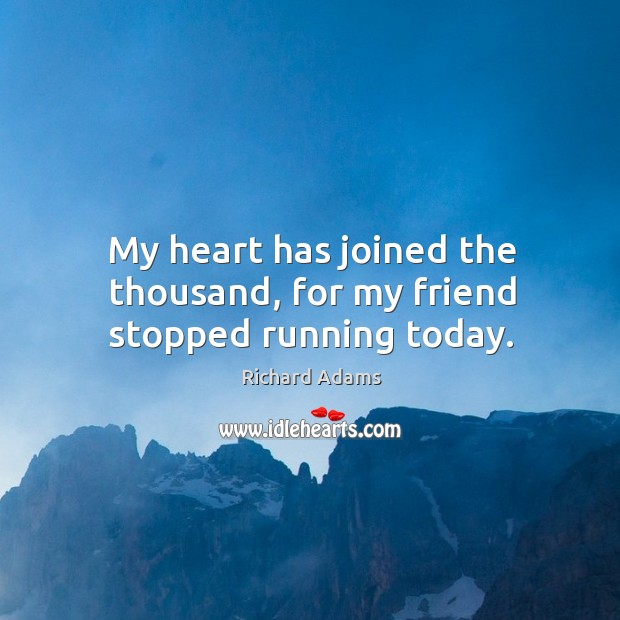 My heart has joined the thousand, for my friend stopped running today. Image