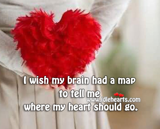 I Wish My Brain Had A Map To Tell Me