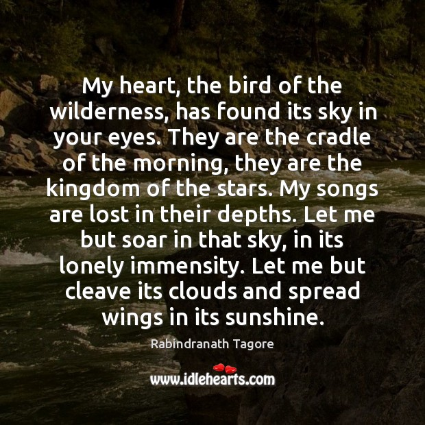 Image, My heart, the bird of the wilderness, has found its sky in
