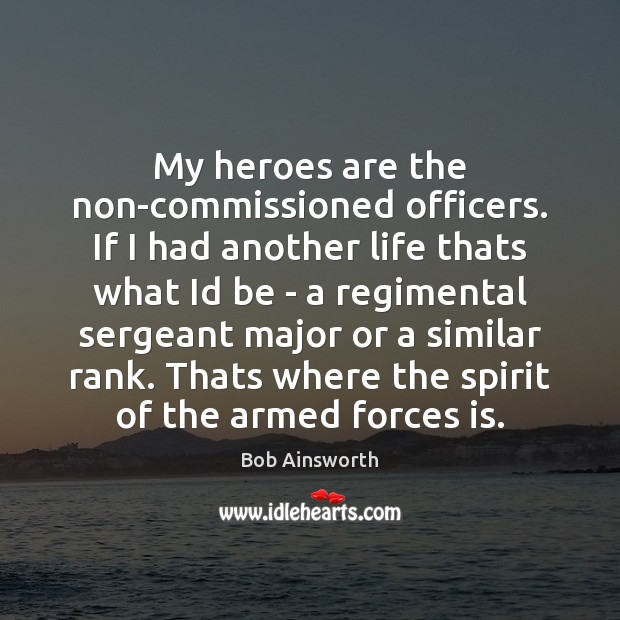 My heroes are the non-commissioned officers. If I had another life thats Image