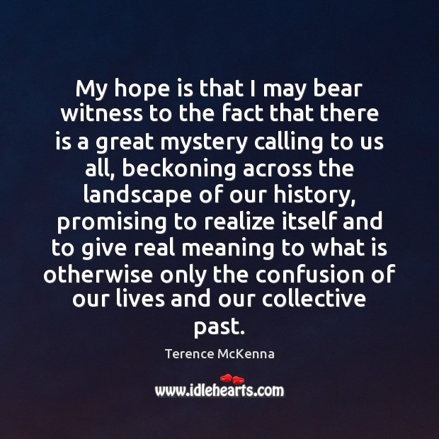 My hope is that I may bear witness to the fact that Terence McKenna Picture Quote