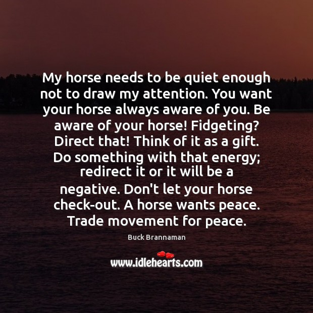 Image, My horse needs to be quiet enough not to draw my attention.
