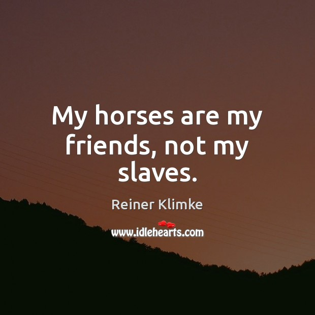 My horses are my friends, not my slaves. Image