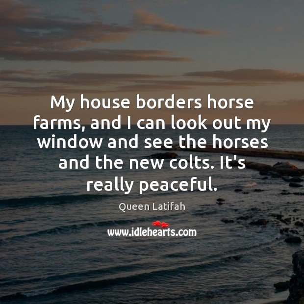 Image, My house borders horse farms, and I can look out my window