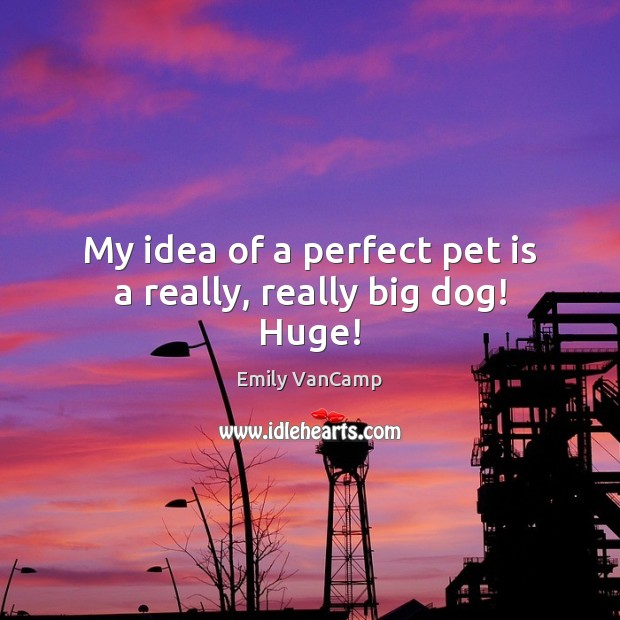 My idea of a perfect pet is a really, really big dog! Huge! Emily VanCamp Picture Quote
