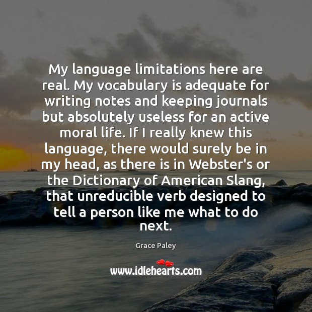 My language limitations here are real. My vocabulary is adequate for writing Image