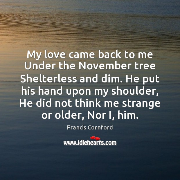 My love came back to me Under the November tree Shelterless and Image