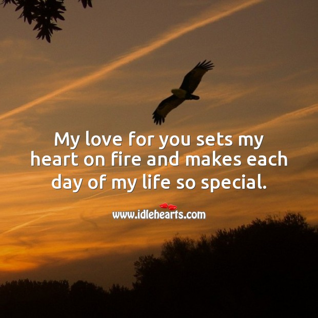 My love for you sets my heart on fire and makes each day of my life so special. Beautiful Love Quotes Image