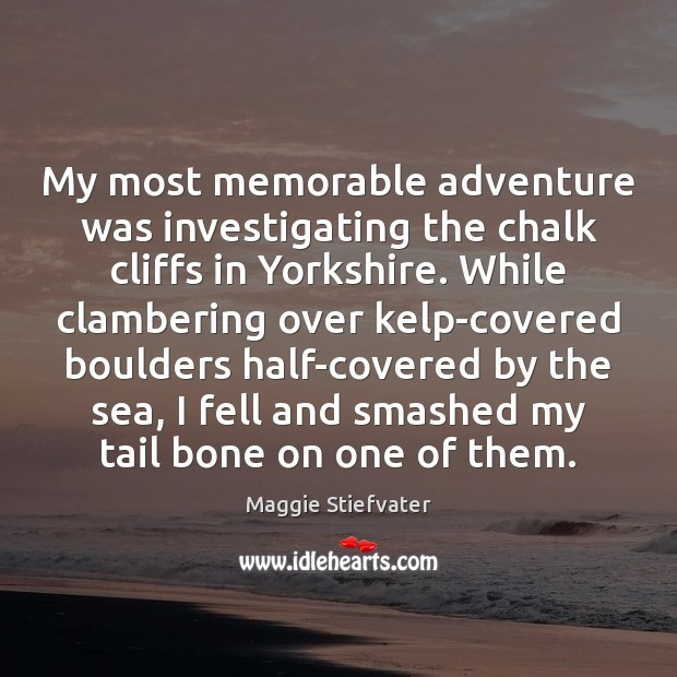 My most memorable adventure was investigating the chalk cliffs in Yorkshire. While Maggie Stiefvater Picture Quote