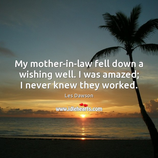My mother-in-law fell down a wishing well. I was amazed; I never knew they worked. Image