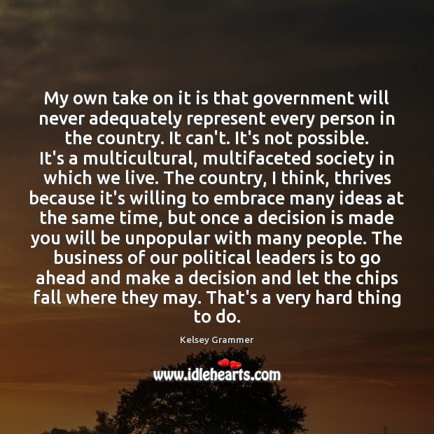 Image, My own take on it is that government will never adequately represent