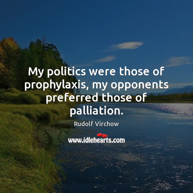 My politics were those of prophylaxis, my opponents preferred those of palliation. Image