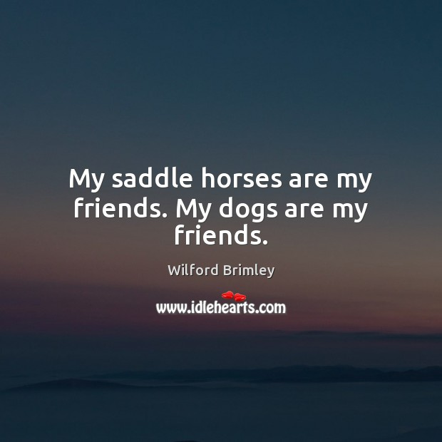 My saddle horses are my friends. My dogs are my friends. Image