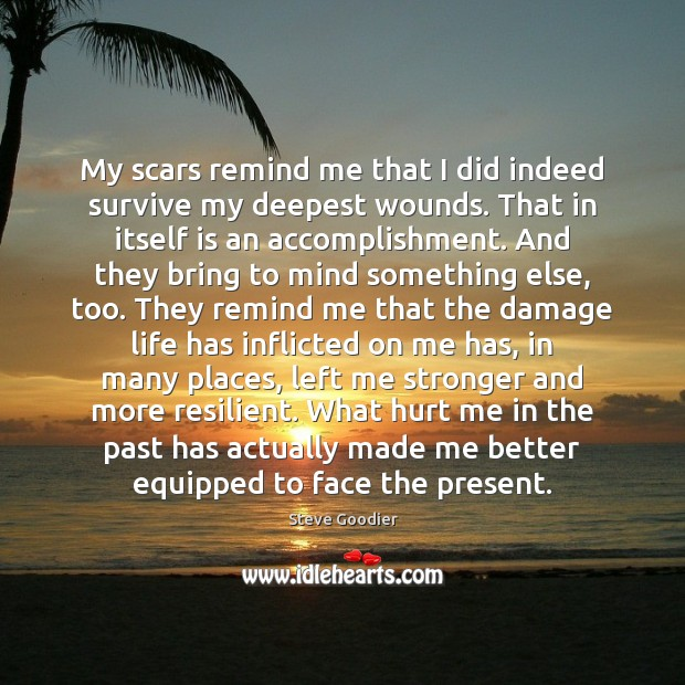 My scars remind me that I did indeed survive my deepest wounds. Steve Goodier Picture Quote