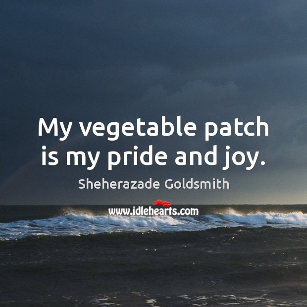 My vegetable patch is my pride and joy. Image