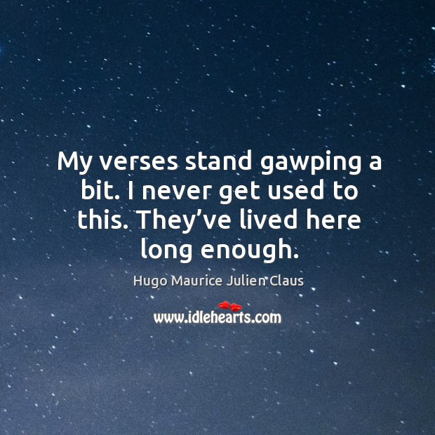 My verses stand gawping a bit. I never get used to this. They've lived here long enough. Image