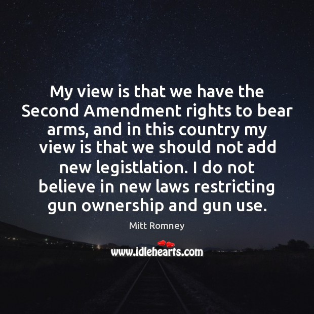 My view is that we have the Second Amendment rights to bear Image