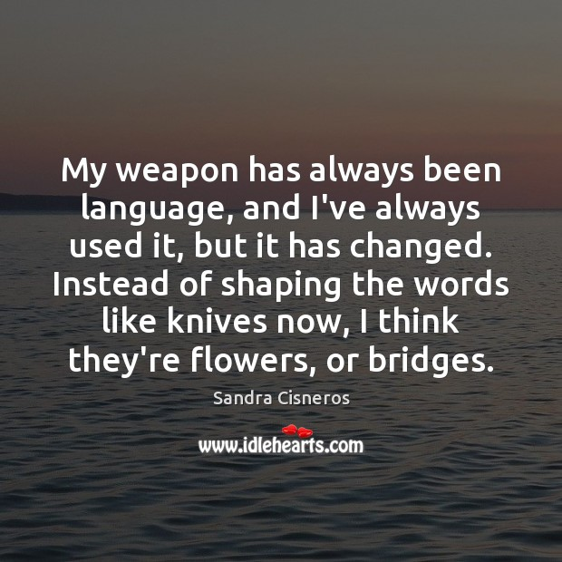 My weapon has always been language, and I've always used it, but Image