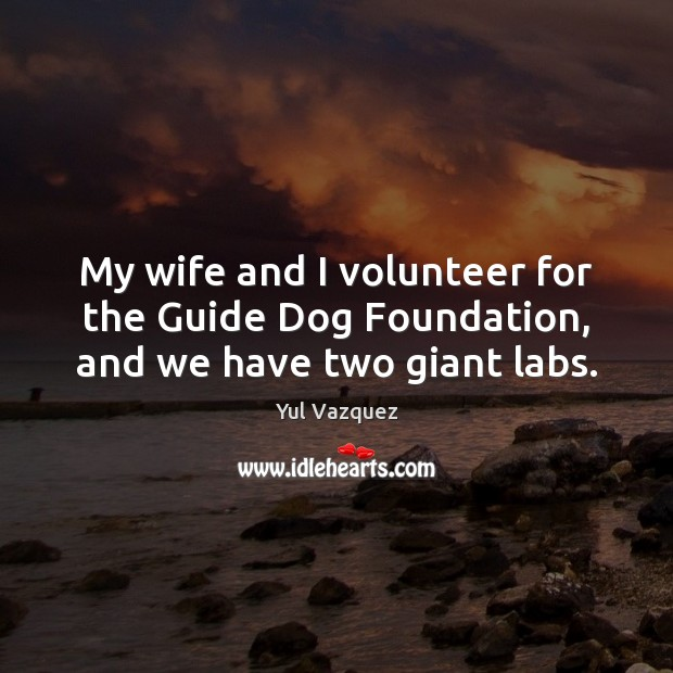 My wife and I volunteer for the Guide Dog Foundation, and we have two giant labs. Image