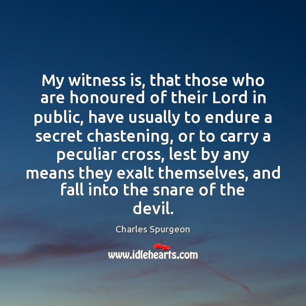 My witness is, that those who are honoured of their Lord in Image