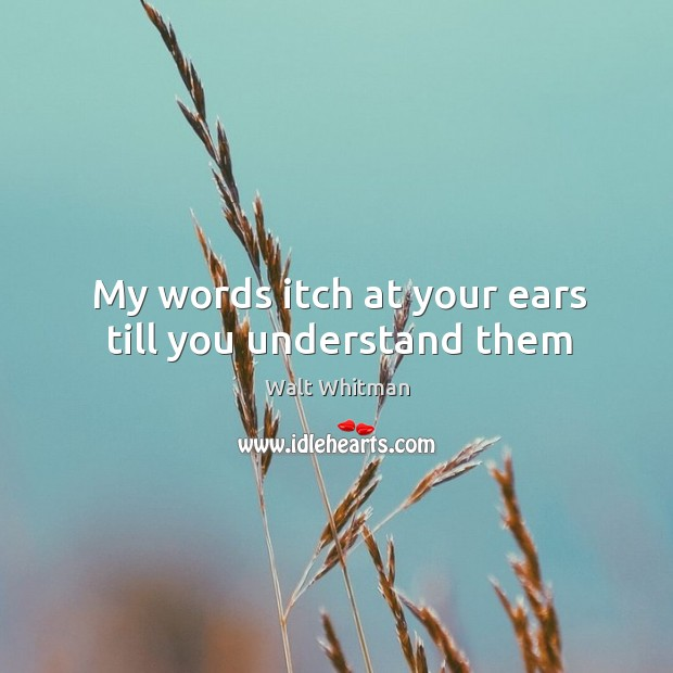 My words itch at your ears till you understand them Image